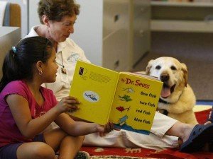 A therapy dog aiding a child