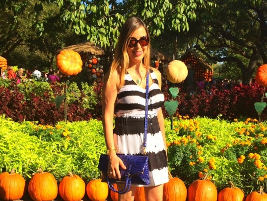 ROXY'S CLOSET: PUMPKIN PATCH STRIPES