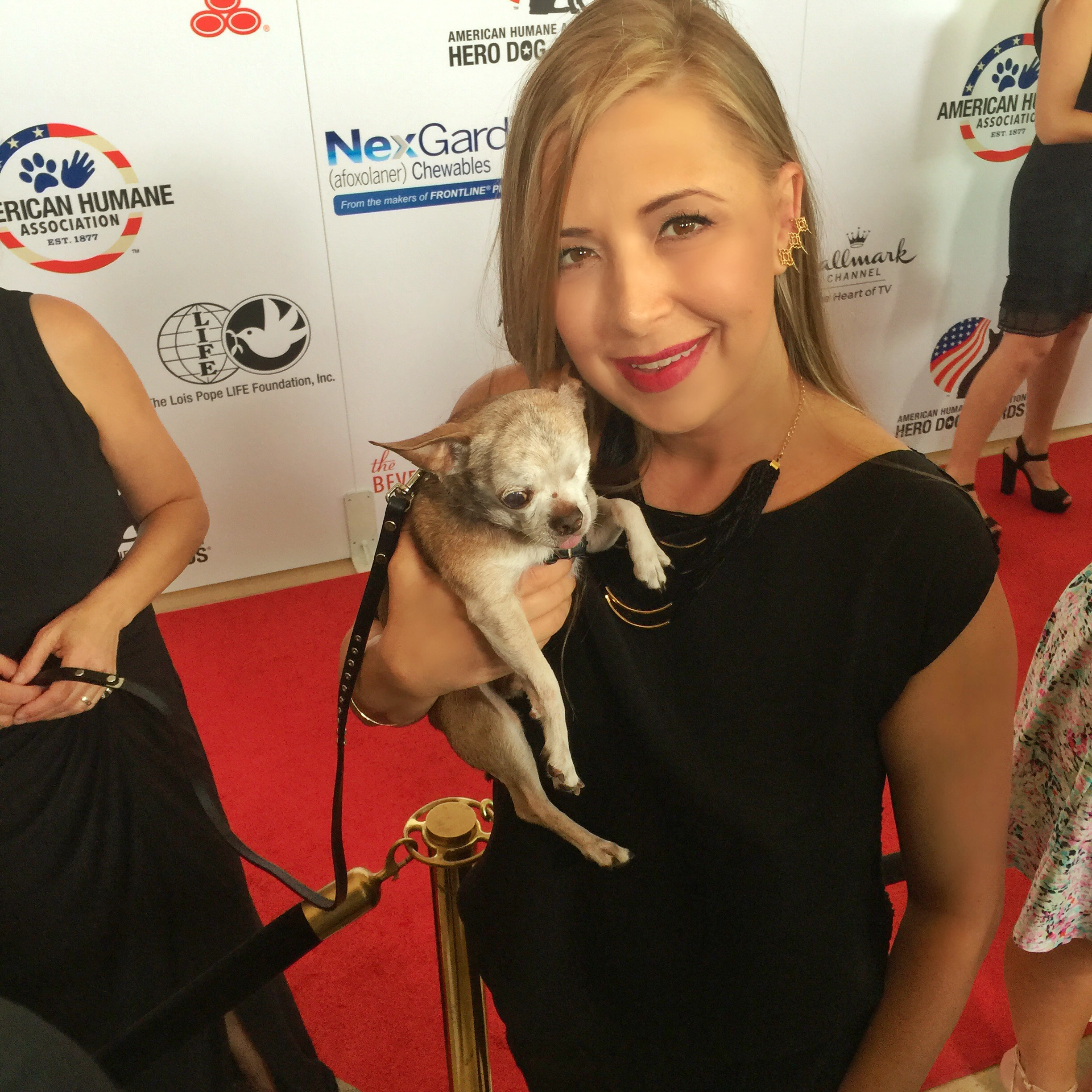 Hanging with American Hero Dog 2015 winner and puppy mill survivor, Harley