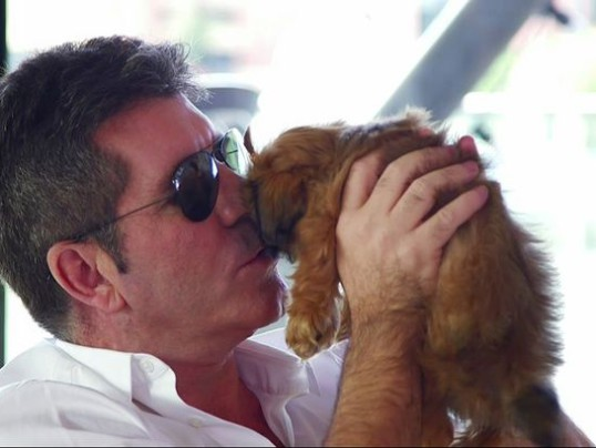 SIMON COWELL FIGHTS AGAINST YULIN DOG MEAT FESTIVAL
