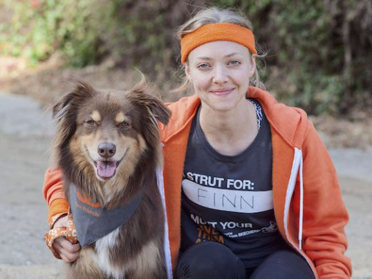 AMANDA SEYFRIED HOSTS STRUT YOUR MUTT
