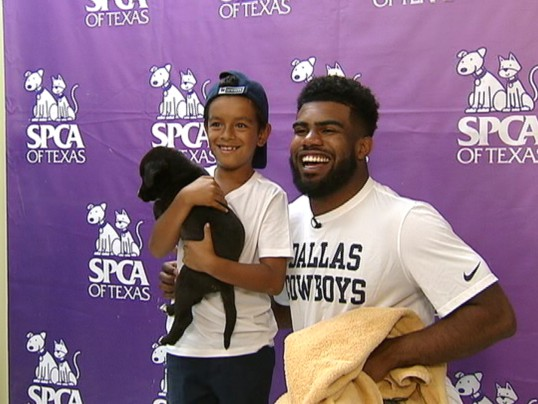NFL STAR EZEKIEL ELLIOTT TAKES A STAND FOR ANIMALS