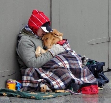 Homeless People and Dogs