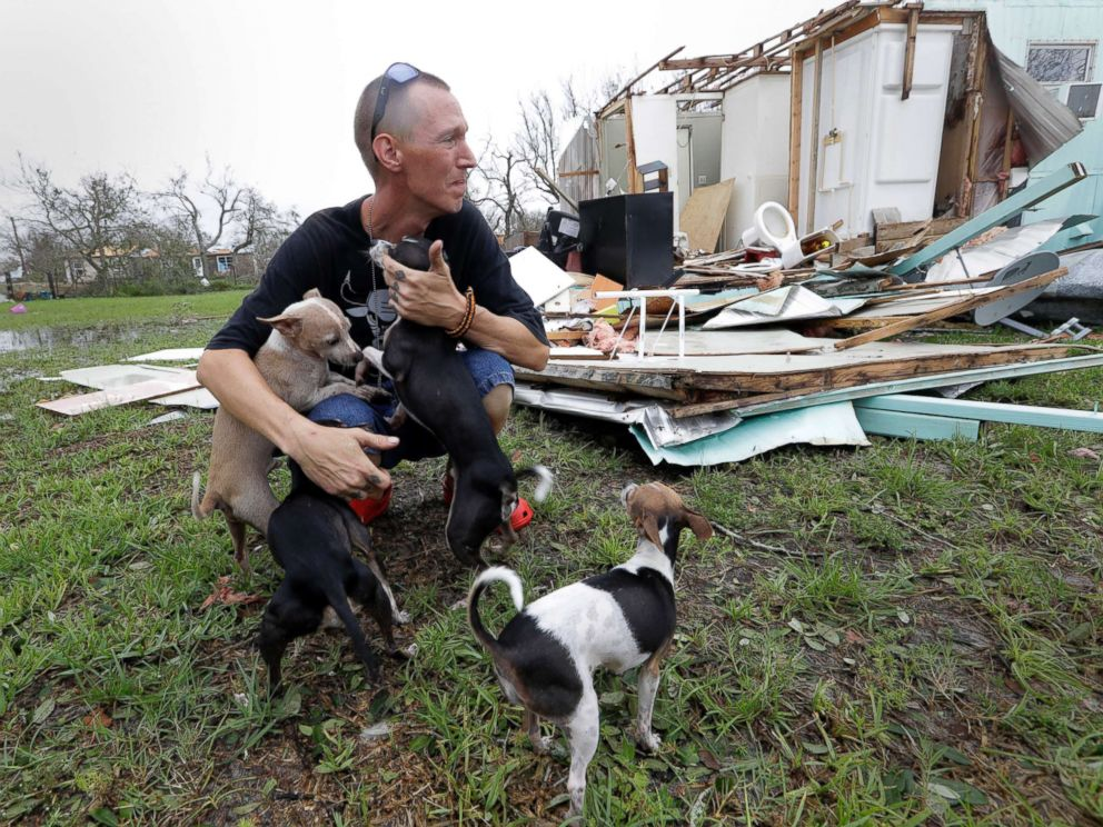 hurricane harvey pets 2