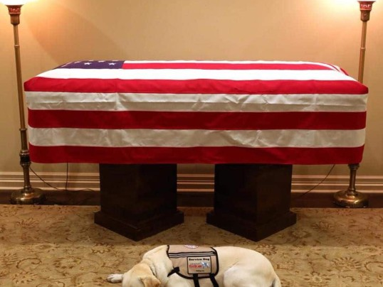 SULLY, BUSH'S DOG, ACCOMPANIES HIM ONE LAST TIME